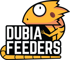 dubia feeders