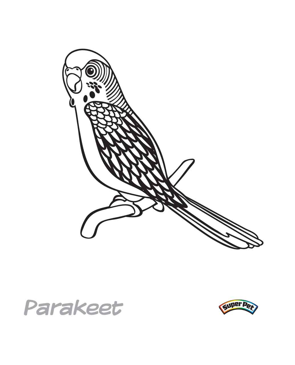 Coloring Page: Bird Coloring Pages