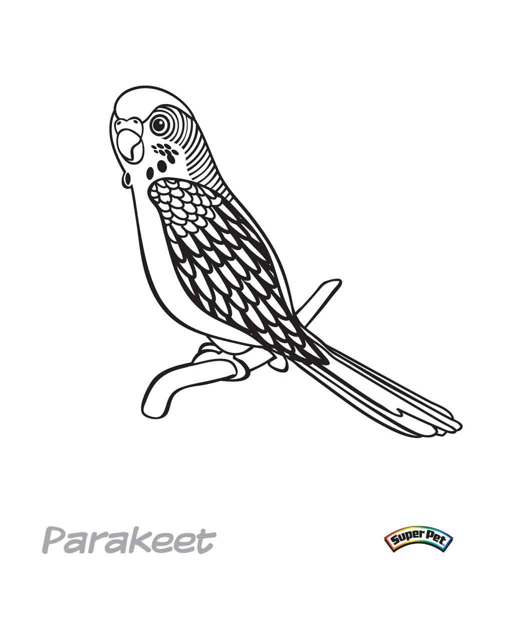 cockatiel bird coloring pages - photo#9