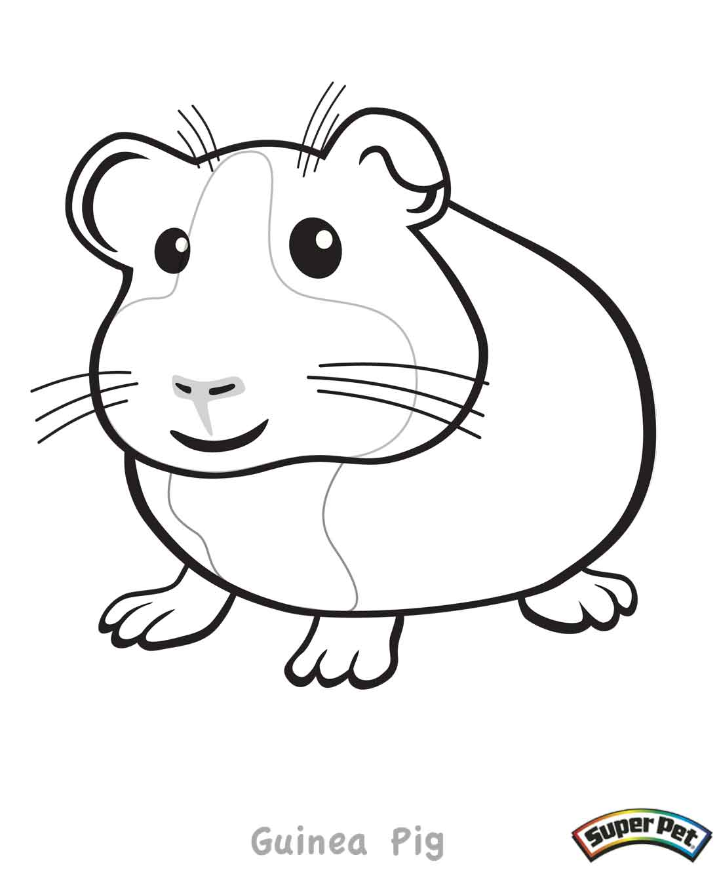 ... Guinea Pig 2